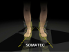 SOMATEC